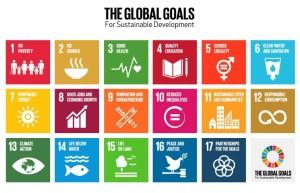 UN New 17 SDG'Ls