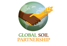Global Soil