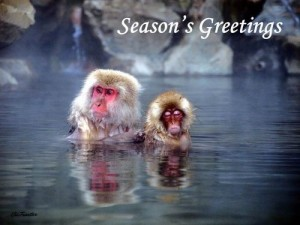 Seasons_greetings_2015 Japan