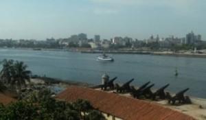 Bay Havana Pics