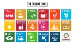 UN DEV GOALS LOGO