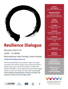 WM Resilience Dialogue WCDRR Flyer FINAL-2