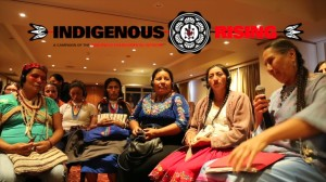 Indigenous People Warrior Women Grandmas....
