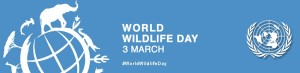 World Wild Life day March 3rd UN Logo
