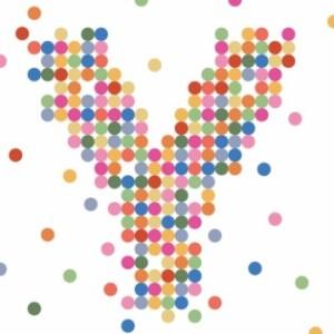 WM UN Yyouth Logo